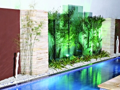 Green colored film adds ambiance to pool area.