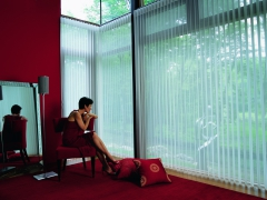 hunter-douglas-luminette-tall-windows